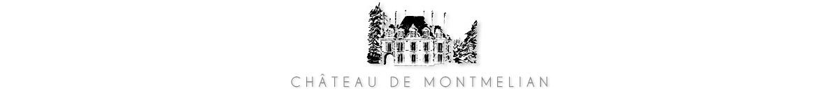Chateau de Montmelian